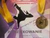 medal-sosnowiec-2013